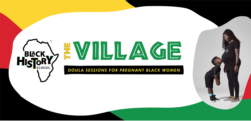 The Village Doulas BHS Web BANNER-01.png