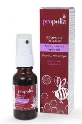 Spray Buccal Apaisant Propolis et Thym 20 ml