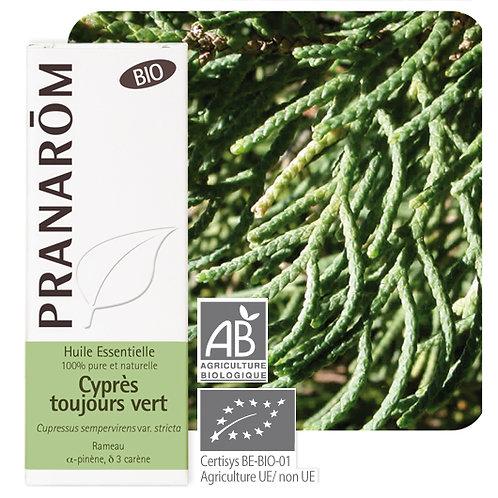Huile essentielle Cyprès toujours vert - rameau BIO 5 ml