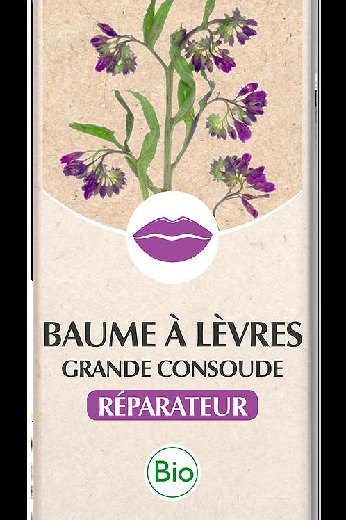 Baume à Lèvres Grande Consoude Bio 10 ml