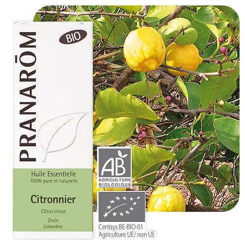 Huile essentielle Citronnier - zeste BIO 10 ml