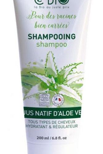 Shampooing 200 ml Cébio