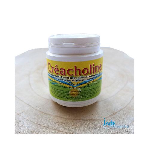 Créacholine 120 gel