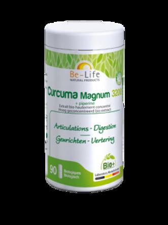 Curcuma Magnum 3200 BIO 90 gél