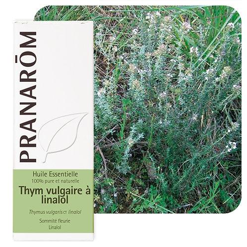 Huile essentielle Thym vulgaire à linalol - sommité fleurie 5 ml