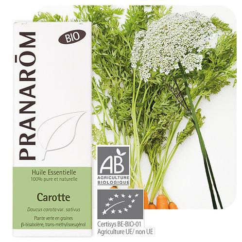 Huile essentielle Carotte - plante verte en graines BIO 5 ml