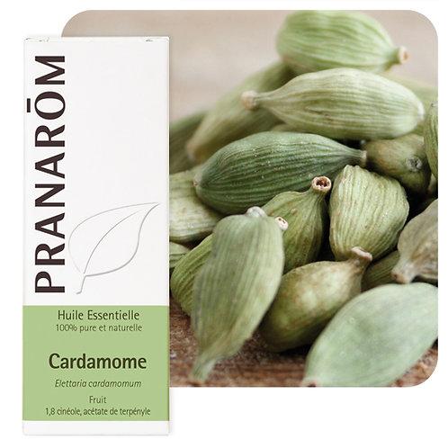 Huile essentielle Cardamome - Fruit 5 ml