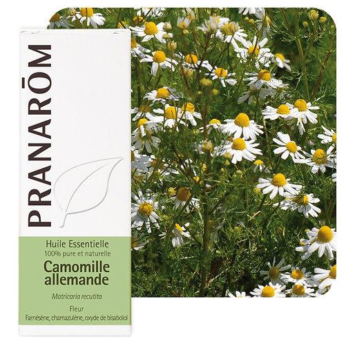 Huile essentielle Camomille allemande - fleur 5 ml
