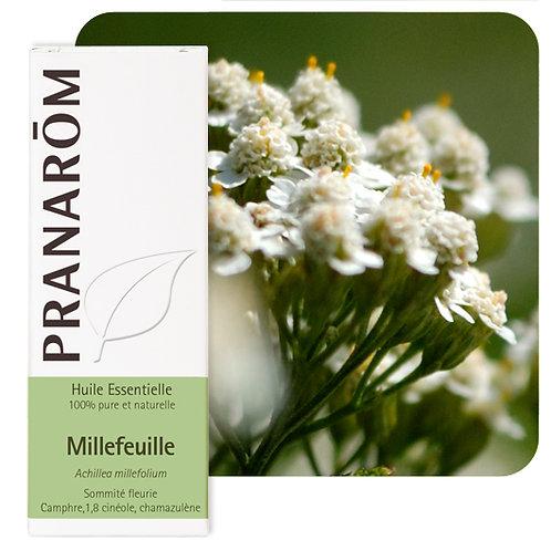Huile essentielle Millefeuille - ommité fleurie 5 ml