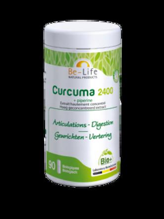Curcuma 2400 BIO 90 gél