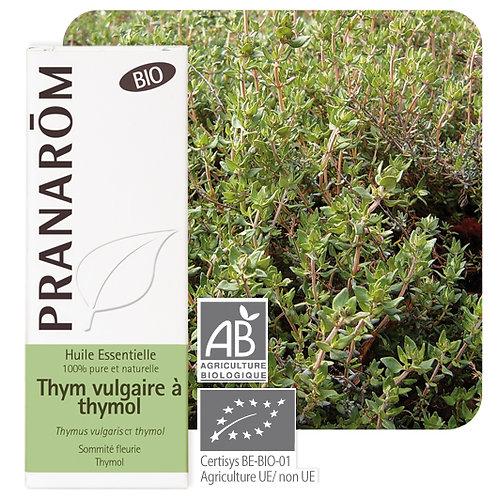Huile essentielle Thym vulgaire à thymol - sommité fleurie BIO 5 ml