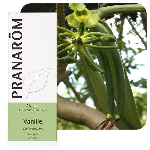 Huile essentielle Vanille - (Absolue) - oléorésine 5 ml