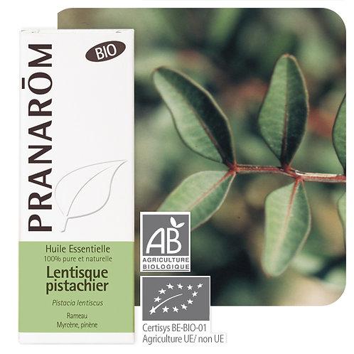 Huile essentielle Lentisque pistachier - rameau BIO 5 ml