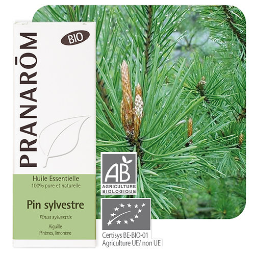 Huile essentielle Pin sylvestre -aiguille BIO 10 ml