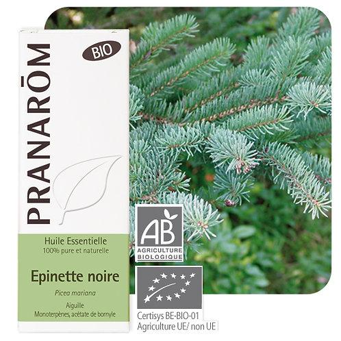 Huile essentielle Epinette noire - aiguille BIO 10 ml