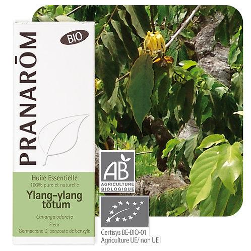 Huile essentielle Ylang-ylang totum - fleur BIO 5 ml