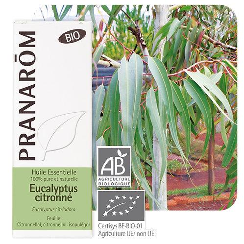Huile essentielle Eucalyptus citronné - feuille BIO 10 ml