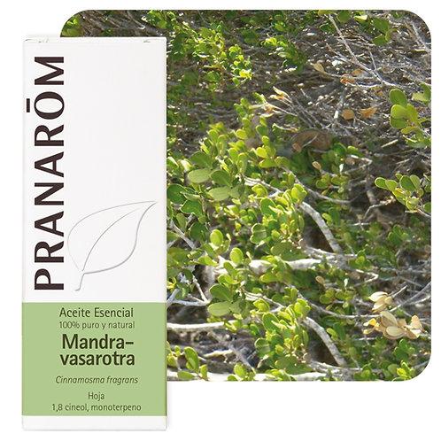 Huile essentielle Mandravasarotra - feuille 10 ml