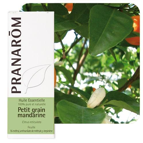Huile essentielle Petit grain mandarine - feuille 5 ml