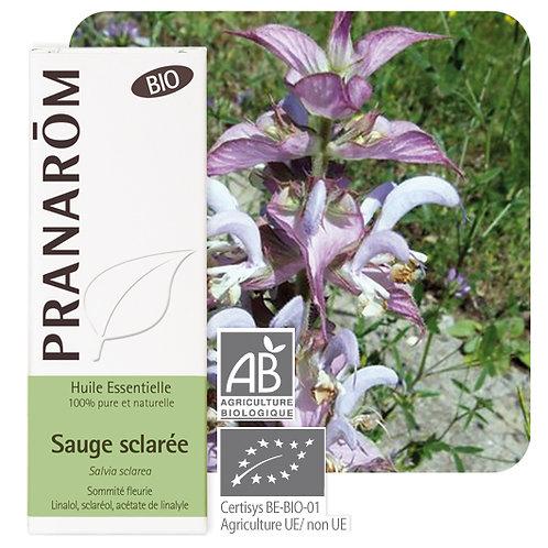 Huile essentielle Sauge sclarée - sommité fleurie BIO 5 ml