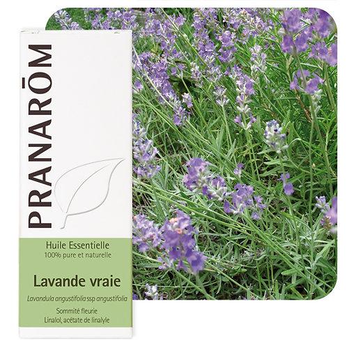 Huile essentielle Lavande vraie - sommité fleurie 10 ml