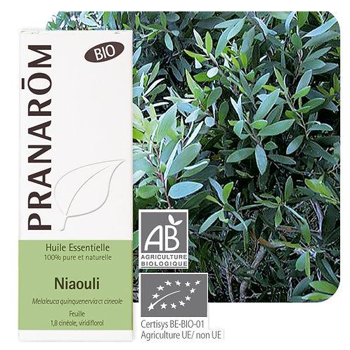 Huile essentielle Niaouli - feuille BIO 10 ml