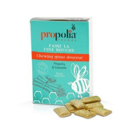 Chewing Gum Propolis Cannelle 27 dragées