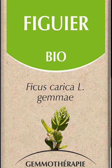 Figuier Bio 50 ml