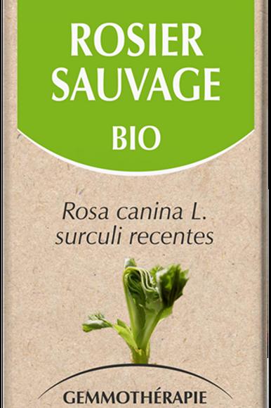 Rosier Sauvage Bio 50 ml
