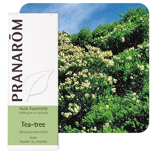 Huile essentielle Tea-tree Bio 100 ml