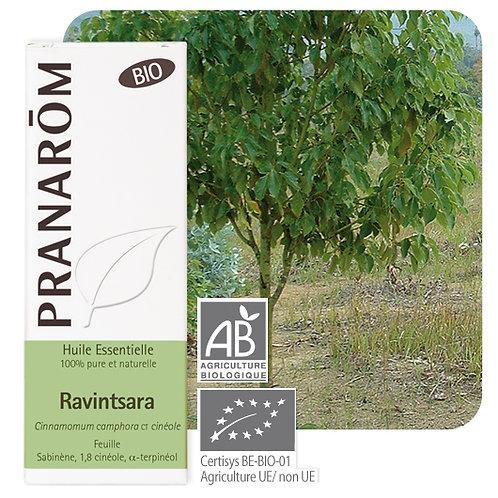 Huile essentielle Ravintsara - feuille BIO 10 ml