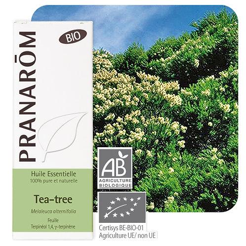 Huile essentielle Tea-tree - feuille BIO 10 ml