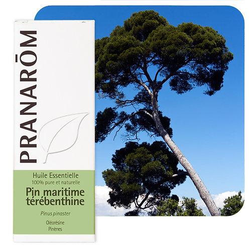 Huile essentielle Pin maritime - oléorésine 10 ml