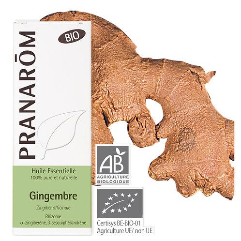 Huile essentielle Gingembre - rhizome BIO 5 ml
