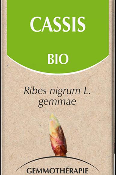 Cassis Bio 50 ml