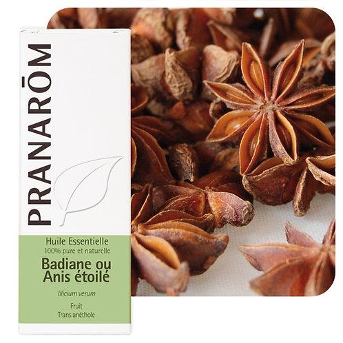 Huile essentielle Badiane ou anis étoilé - fruit 10 ml