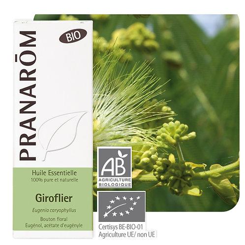 Huile essentielle Giroflier - bouton floral BIO 10 ml