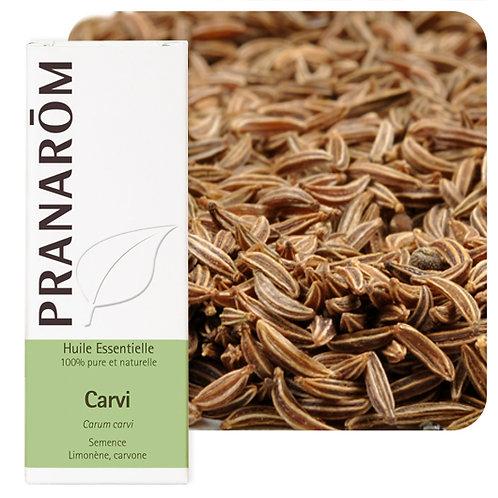 Huile essentielle Carvi - semence 10 ml