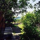 ゆうべ亭の中庭です。風が通り抜けるので、朝、四万十川を眺めながら、テラスでコーヒ
