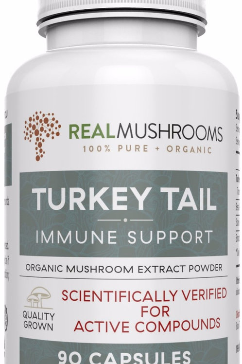 Turkey Tail Mushrooms: Immune Support