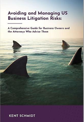Ark Pubs_Litigation Risks_Cover.JPG
