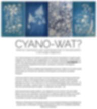 Cyanotype blue flowers willemijn franska