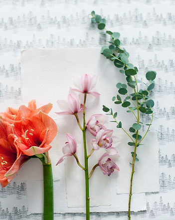 Flowers eucalyptus orchid amarillus