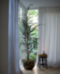 5 Kerstboom.jpg