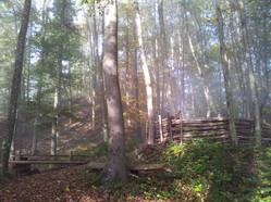 2012-10-20 10.14.50 - Kopie.jpg