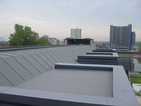 protan roof.jpg