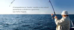 sea-fishing-2378263_.jpg