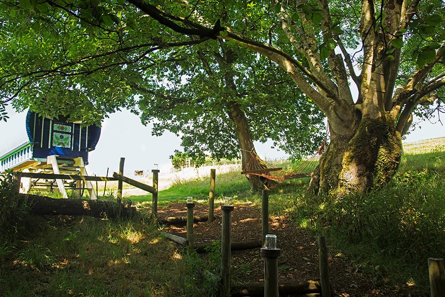 WEB_FRIENDLY_Fisherton_Farm_Vintage_Vardos_D46A8997_Andrew_Ogilvy_Photography.jpg