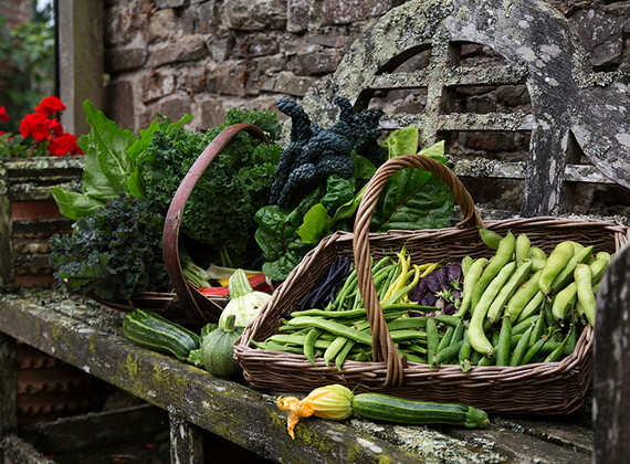 WEB_FRIENDLY_Fisherton_Farm_North_Devon_photographed_by_Andrew_Ogilvy_Photography_7.jpg