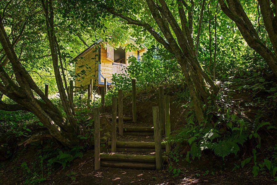 WEB_FRIENDLY_Fisherton_Farm_Vintage_Vardos_D46A9462_Andrew_Ogilvy_Photography.jpg